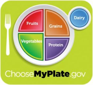 Colored plate diagram showing how foods should be divided at meals