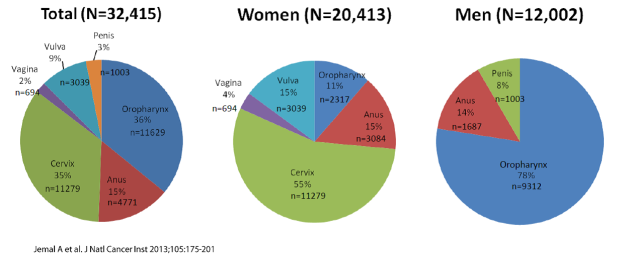 three pie charts show types of HPV for men and women